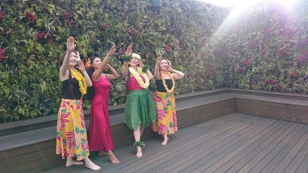 武蔵小杉 フラダンス教室